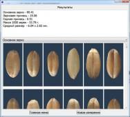 Результат определения состава зерна